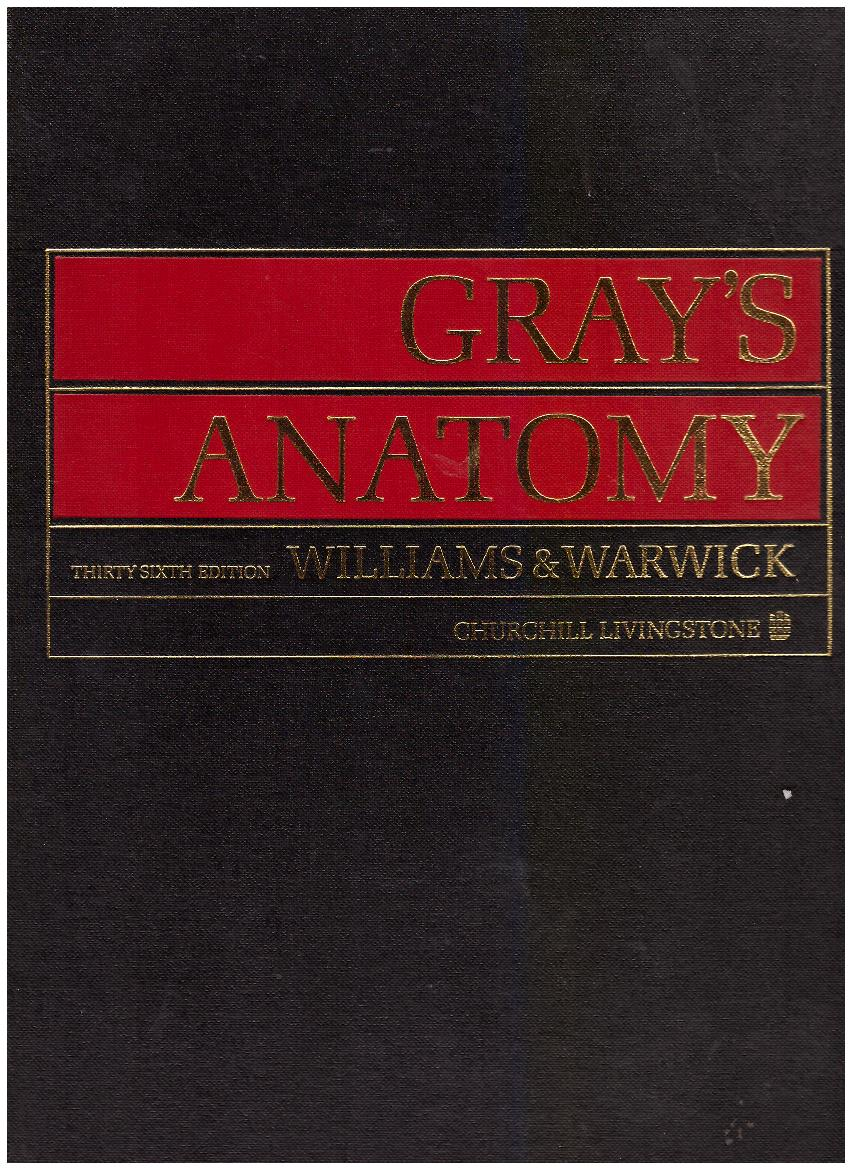 kuva: Gray´s Anatomy