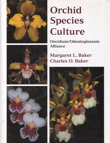 kuva: Orchid Species Culture - Oncidium/Odontoglossum Alliance (orkideat)