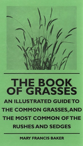 kuva: The Book of Grasses (ruohot)