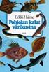 Pohjolan kalat värikuvina