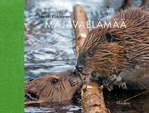 Kokkonen Heikki - Majavaelämää